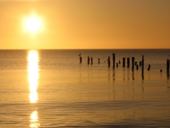 Valentīndienas saulīte mostas Kolkas jūrmalā. 14.02.2019 B.Šuvcānes foto