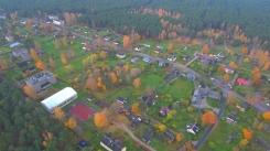 Dzeltenie akcenti Kolkas ciema zaļo toņu paklājā. 29.10.2020